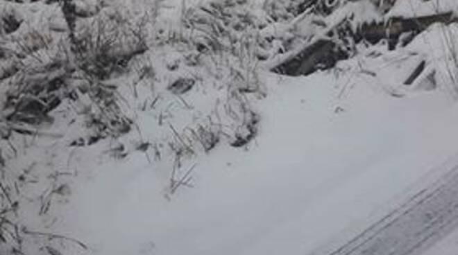 Neve pian della fioba