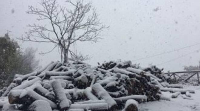 neve comano