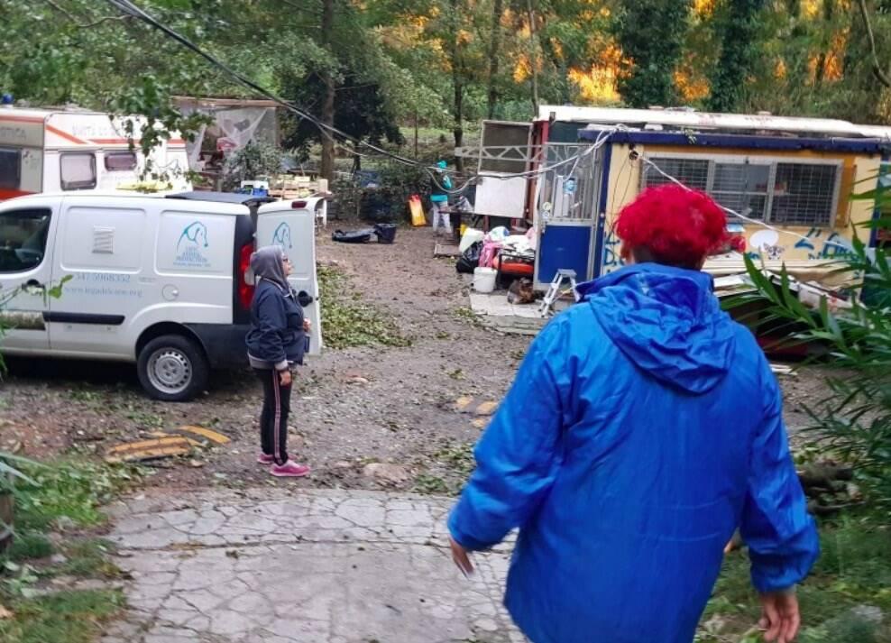 Il Canile Rifugio completamente distrutto di via Montepepe (Massa)