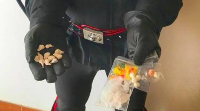 La droga sequestrata dai carabinieri di Carrara
