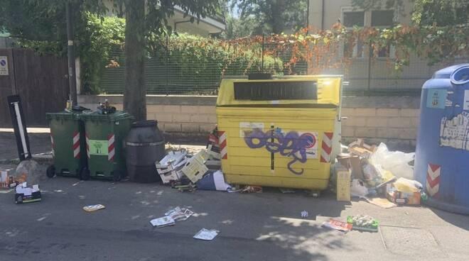 «Abbandonati tra rifiuti e topi». L'allarme dei residenti di Marina di Massa
