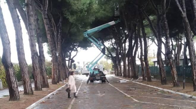 Tromba d'aria e danni del maltempo a Marina di Carrara