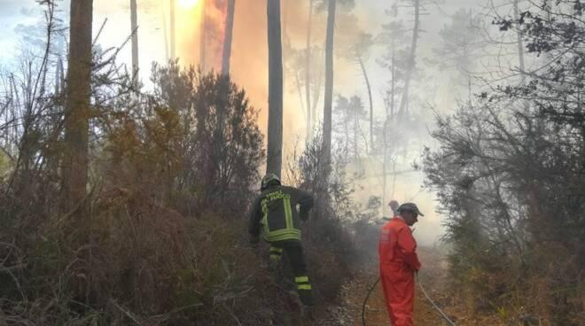 Incendio nel bosco nei pressi di Quercia, Aulla