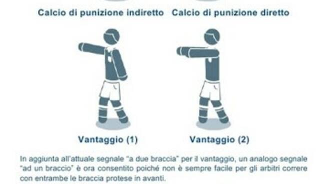 5- L'arbitro