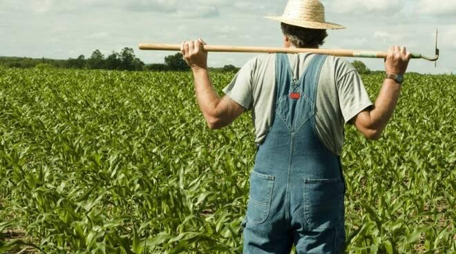 Un agricoltore