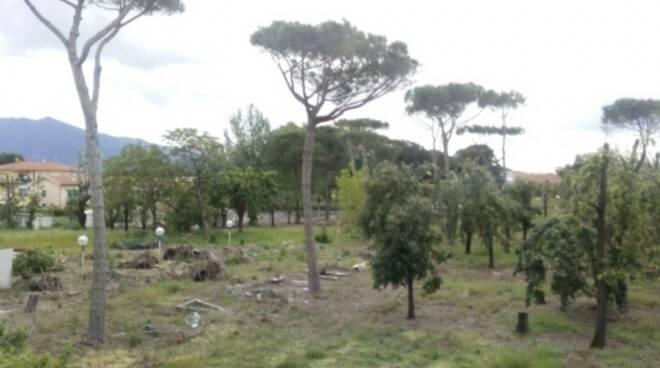 Desolazione all'ex Parco dei conigli