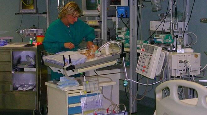 Un neonato in incubatrice