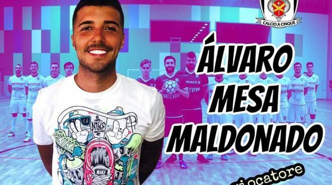 Alvaro Mesa Maldonado