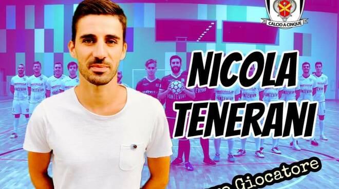 Nicola Tenerani