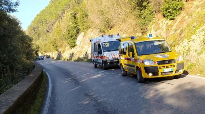 l'ambulanza veterinaria della croce oro