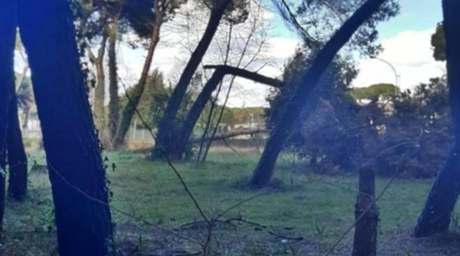 Degrado al parco Ugo Pisa di Marina di Massa
