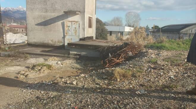 L'acqua stagnante e le condizioni di via Argine Sinistro a Carrara