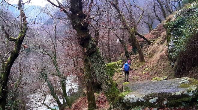 sentiero montagna pian della fioba alpi apuane parco