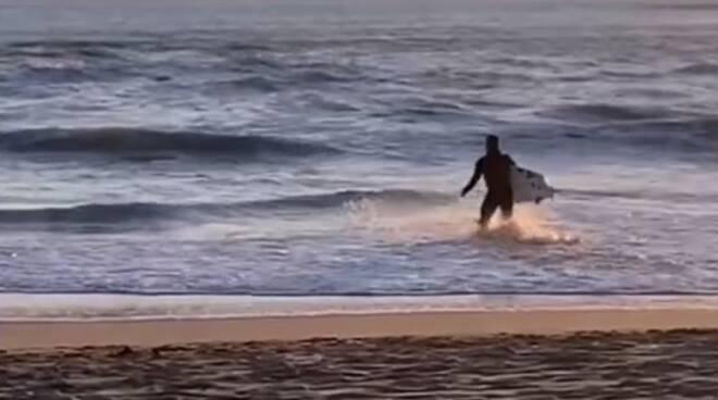 Surfista surf
