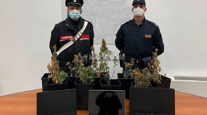 carabinieri polizia marijuana droga