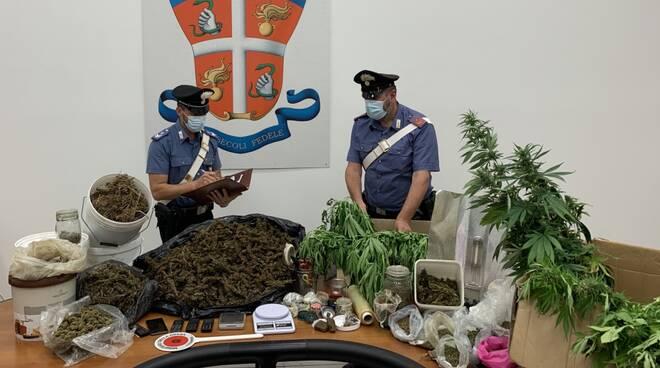 cannabis marijuana carabinieri