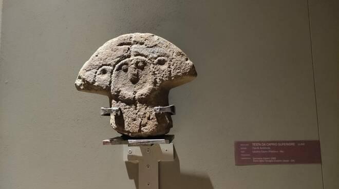 statua stele caprio