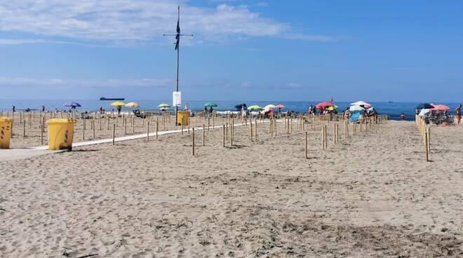 spiaggia libera marina di carrara