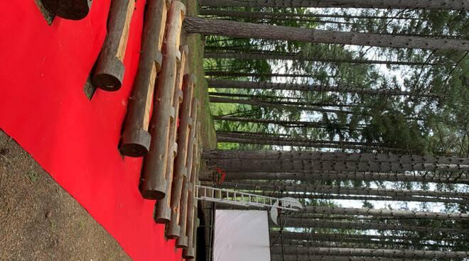 Un cinema nel bosco a Passo Carpinelli