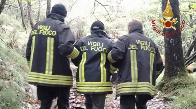 fungaiolo disperso vigili del fuoco bosco